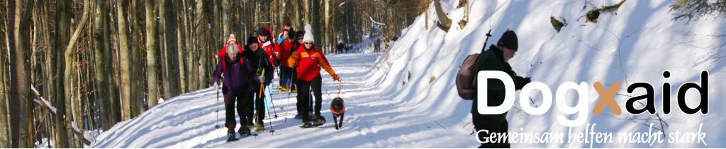 Bruno und Grace - Blindenführhunde - www.dogxaid.org