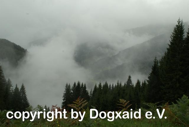 Blick durch den Nebel ins Tal